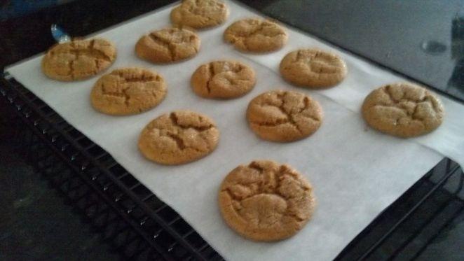 solar oven cookies